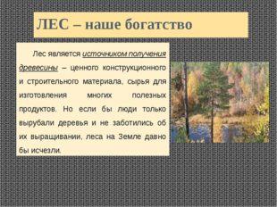 ЛЕС – наше богатство Лес является источником получения древесины – ценного к