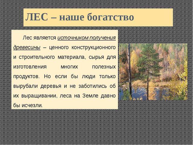 ЛЕС – наше богатство Лес является источником получения древесины – ценного к...