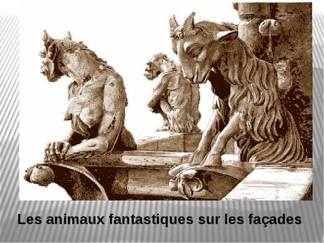 Les animaux fantastiques sur les façades