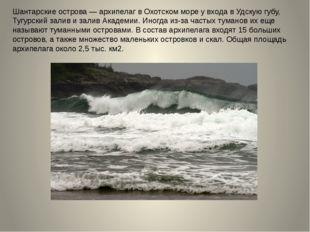 Шантарские острова — архипелаг в Охотском море у входа в Удскую губу, Тугурск