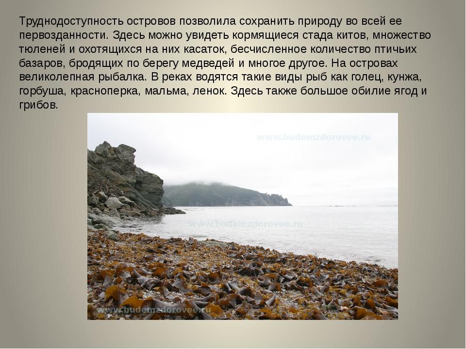 Труднодоступность островов позволила сохранить природу во всей ее первозданно...