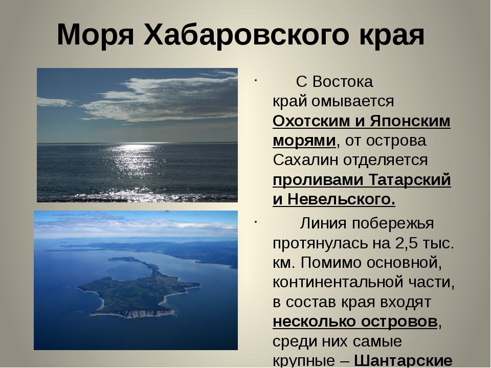 Моря Хабаровского края С Востока крайомывается Охотским и Японским морями, о...