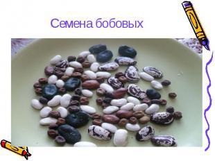 hello_html_37fe8d9.jpg