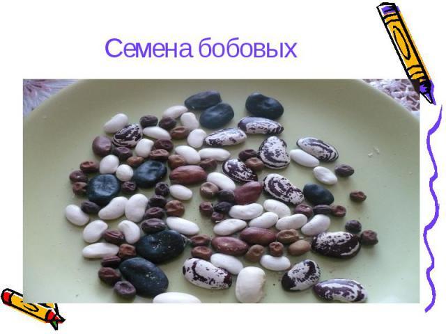 hello_html_4a22890.jpg