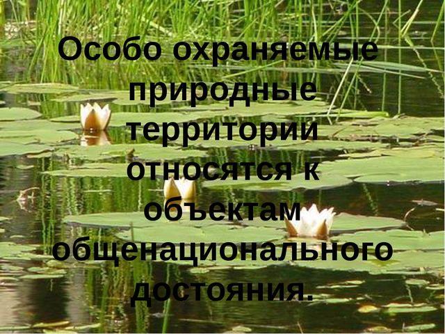 Особо охраняемые природные территории относятся к объектам общенационального...