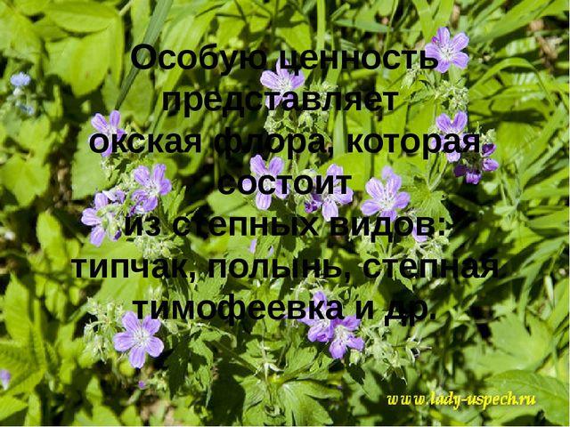 Особую ценность представляет окская флора, которая состоит из степных видов:...