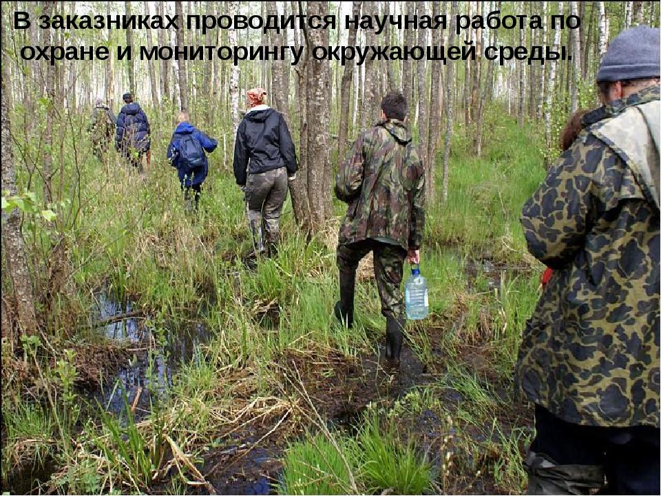 В заказниках проводится научная работа по охране и мониторингу окружающей ср...