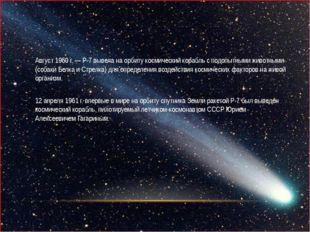 Август 1960 г. — Р-7 вывела на орбиту космический корабль с подопытными живо