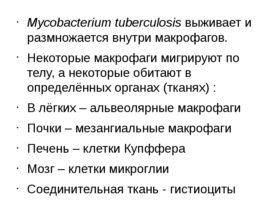 Mycobacterium tuberculosis выживает и размножается внутри макрофагов. Некотор...