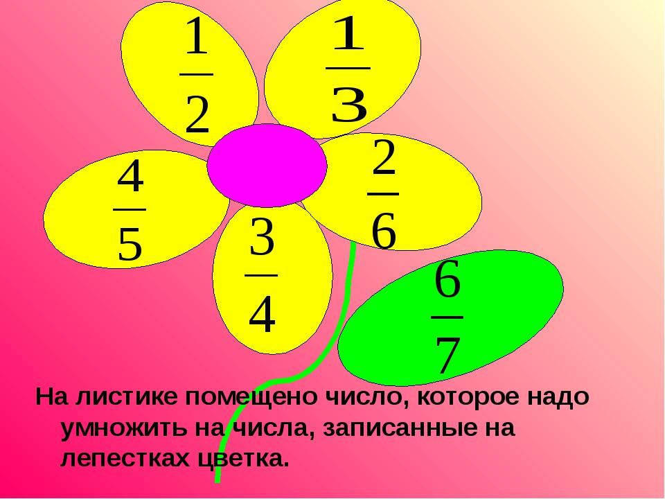 На листике помещено число, которое надо умножить на числа, записанные на лепе...