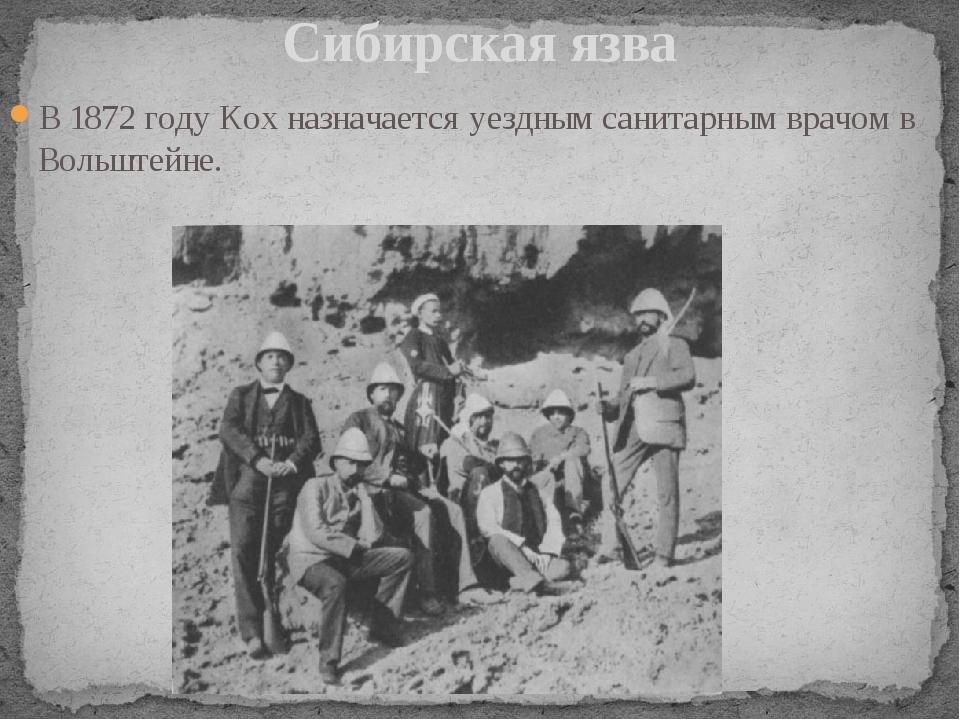 В 1872 году Кох назначается уездным санитарным врачом в Вольштейне. Сибирская...