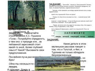 ЗАДАНИЕ. Перечитайте стихотворение А.С. Пушкина «Туча». Попробуйте определить
