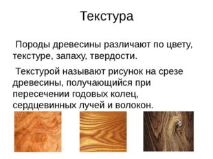 Текстура Породы древесины различают по цвету, текстуре, запаху, твердости. Те