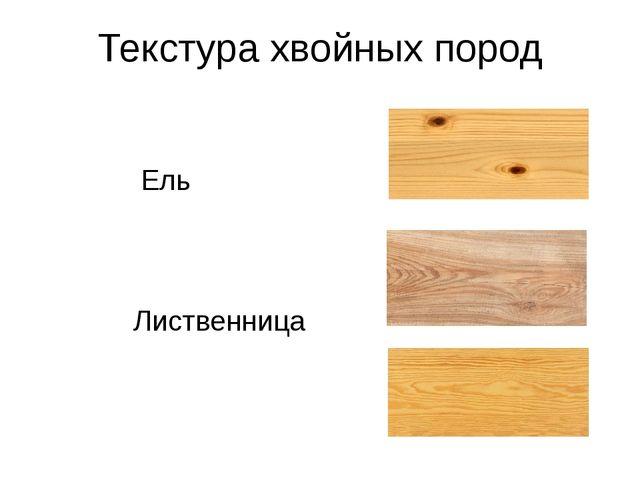 Текстура хвойных пород Ель Лиственница Сосна