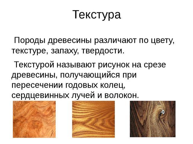 Текстура Породы древесины различают по цвету, текстуре, запаху, твердости. Те...