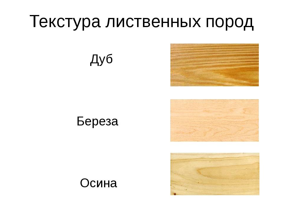 Текстура лиственных пород Дуб Береза Осина