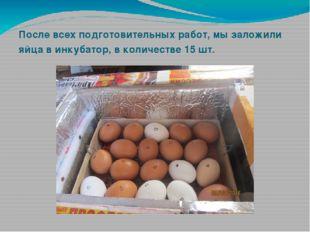После всех подготовительных работ, мы заложили яйца в инкубатор, в количестве