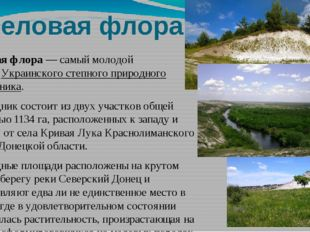 Меловая флора Меловая флора— самый молодой филиалУкраинского степного приро