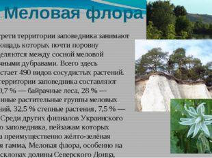 Меловая флора Около трети территории заповедника занимают леса, площадь котор