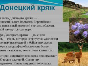 Донецкий кряж Назван в честьДонецкого кряжа— возвышенности на юге Восточно-