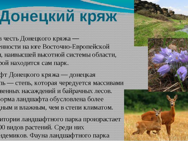 Донецкий кряж Назван в честьДонецкого кряжа— возвышенности на юге Восточно-...