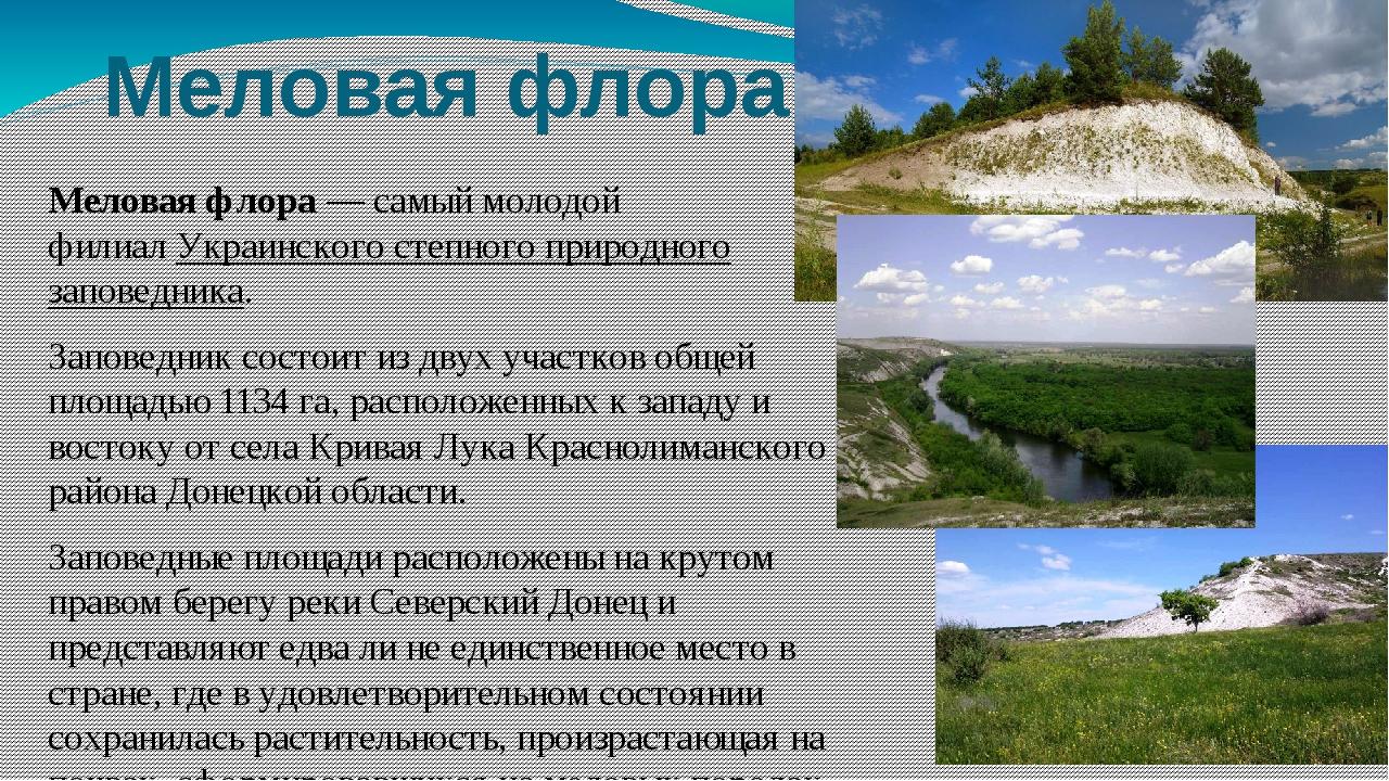 Меловая флора Меловая флора— самый молодой филиалУкраинского степного приро...