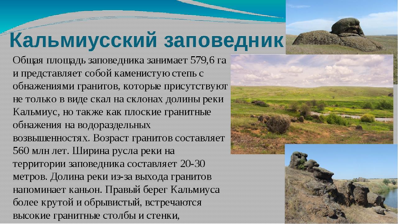 Кальмиусский заповедник Общая площадь заповедника занимает 579,6 га и предста...