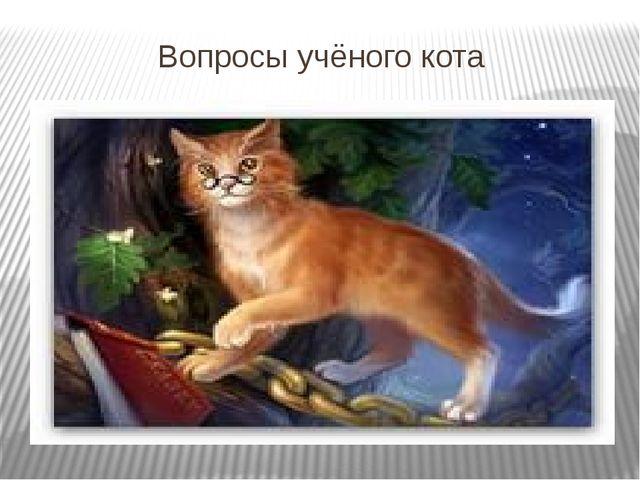 Вопросы учёного кота
