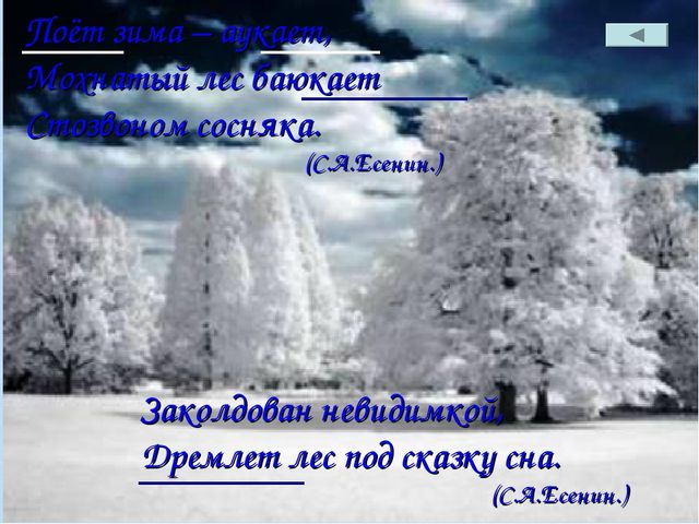Поёт зима – аукает, Мохнатый лес баюкает Стозвоном сосняка. (С.А.Есенин.)...