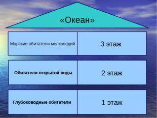«Океан» Морские обитатели мелководий 3 этаж Сообщество ораллового рифа ж Обит