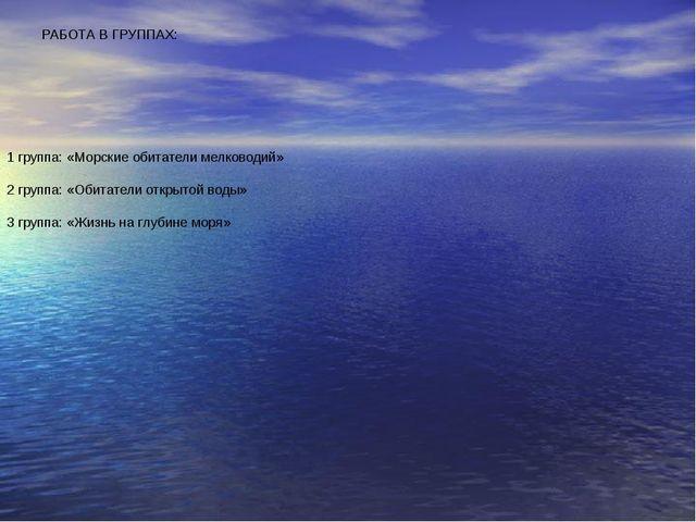 РАБОТА В ГРУППАХ: 1 группа: «Морские обитатели мелководий» 2 группа: «Обитате...