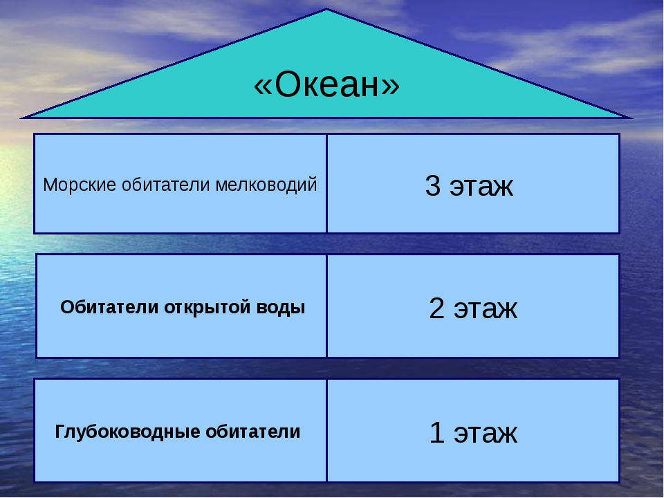 «Океан» Морские обитатели мелководий 3 этаж Сообщество ораллового рифа ж Обит...