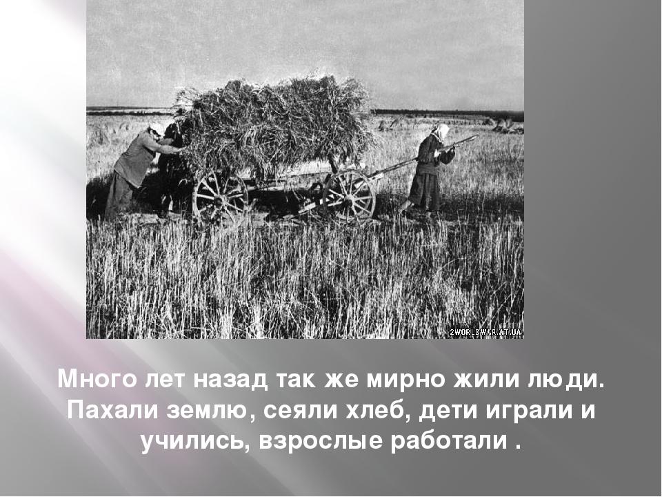 Много лет назад так же мирно жили люди. Пахали землю, сеяли хлеб, дети играли...