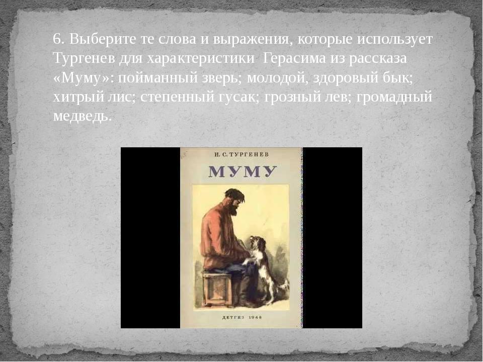 6. Выберите те слова и выражения, которые использует Тургенев для характерист...