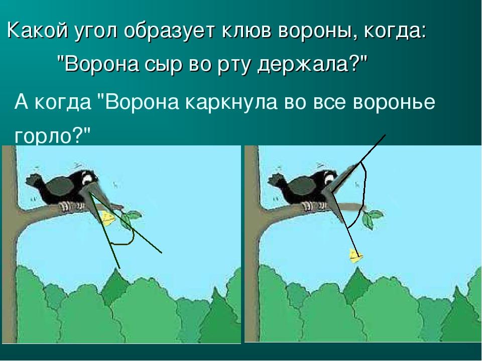 """Какой угол образует клюв вороны, когда: """"Ворона сыр во рту держала?"""" А когда..."""