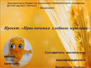 Муниципальное Бюджетное Дошкольное Образовательное Учреждение Детский сад №12