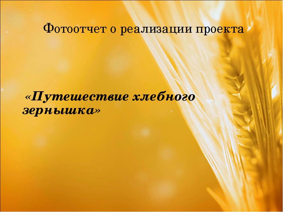 Фотоотчет о реализации проекта «Путешествие хлебного зернышка»