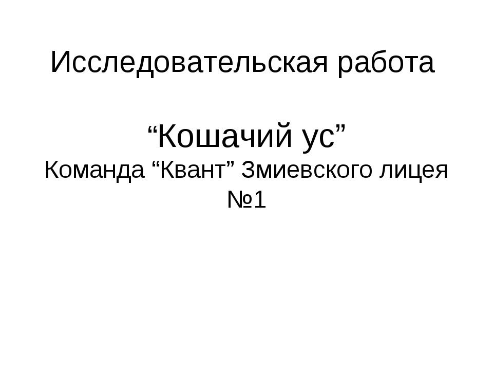 """Исследовательская работа """"Кошачий ус"""" Команда """"Квант"""" Змиевского лицея №1"""