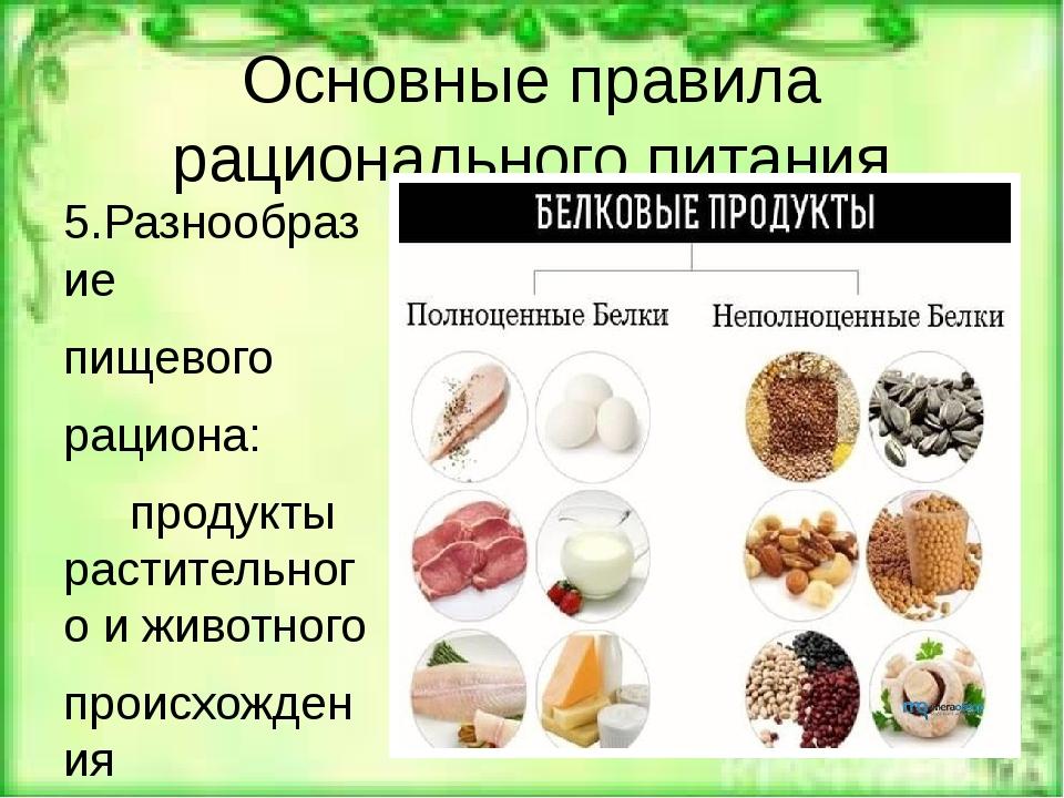 Основные правила рационального питания 5.Разнообразие пищевого рациона: проду...