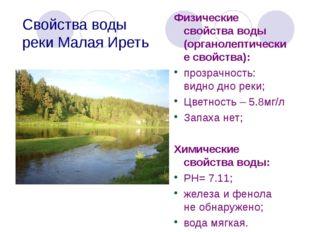 Свойства воды реки Малая Иреть Физические свойства воды (органолептические св