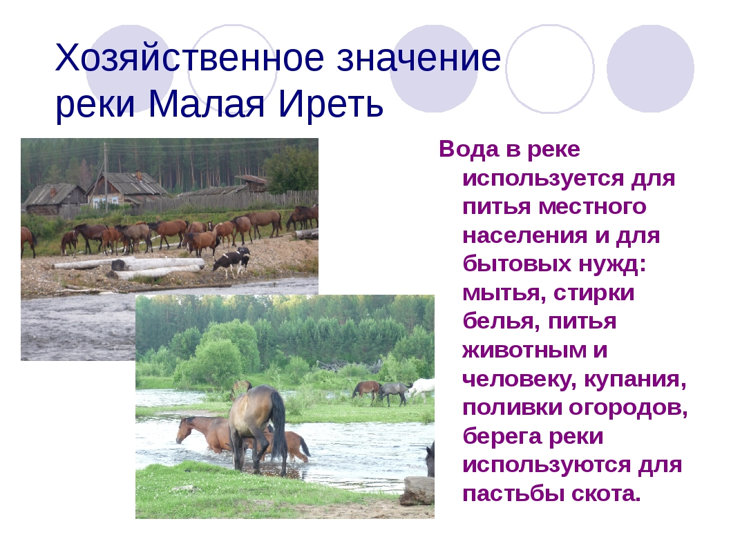 Хозяйственное значение реки Малая Иреть Вода в реке используется для питья ме...