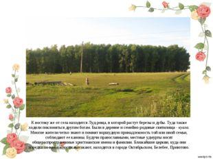 К востоку же от села находится Луд-роща, в которой растут березы и дубы. Туда