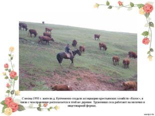 С весны 1993 г. жители д. Купченеево создали ассоциацию крестьянских хозяйств