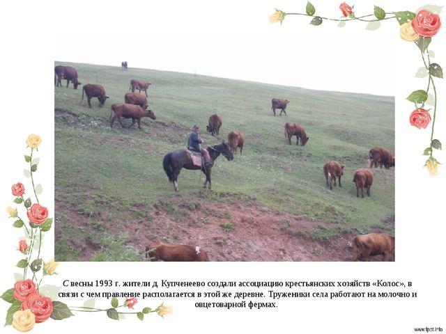 С весны 1993 г. жители д. Купченеево создали ассоциацию крестьянских хозяйств...