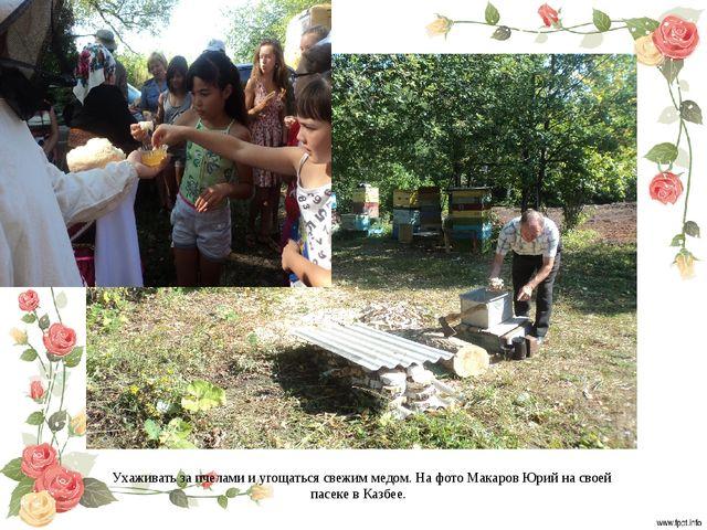 Ухаживать за пчелами и угощаться свежим медом. На фото Макаров Юрий на своей...