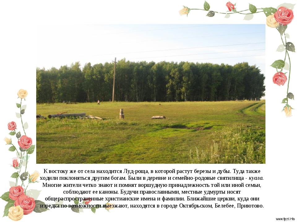 К востоку же от села находится Луд-роща, в которой растут березы и дубы. Туда...