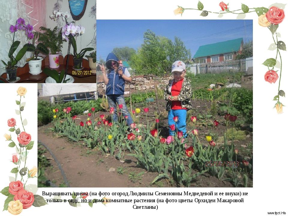 Выращивать цветы (на фото огород Людмилы Семеновны Медведевой и ее внуки) не...