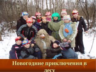 Новогодние приключения в лесу