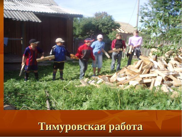 Тимуровская работа