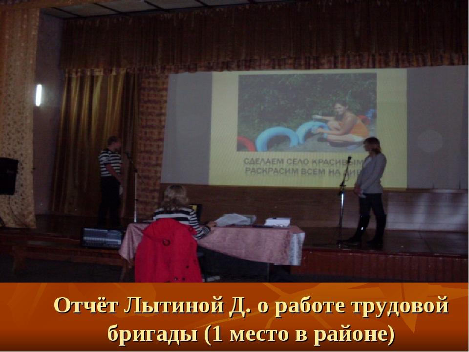 Отчёт Лытиной Д. о работе трудовой бригады (1 место в районе)